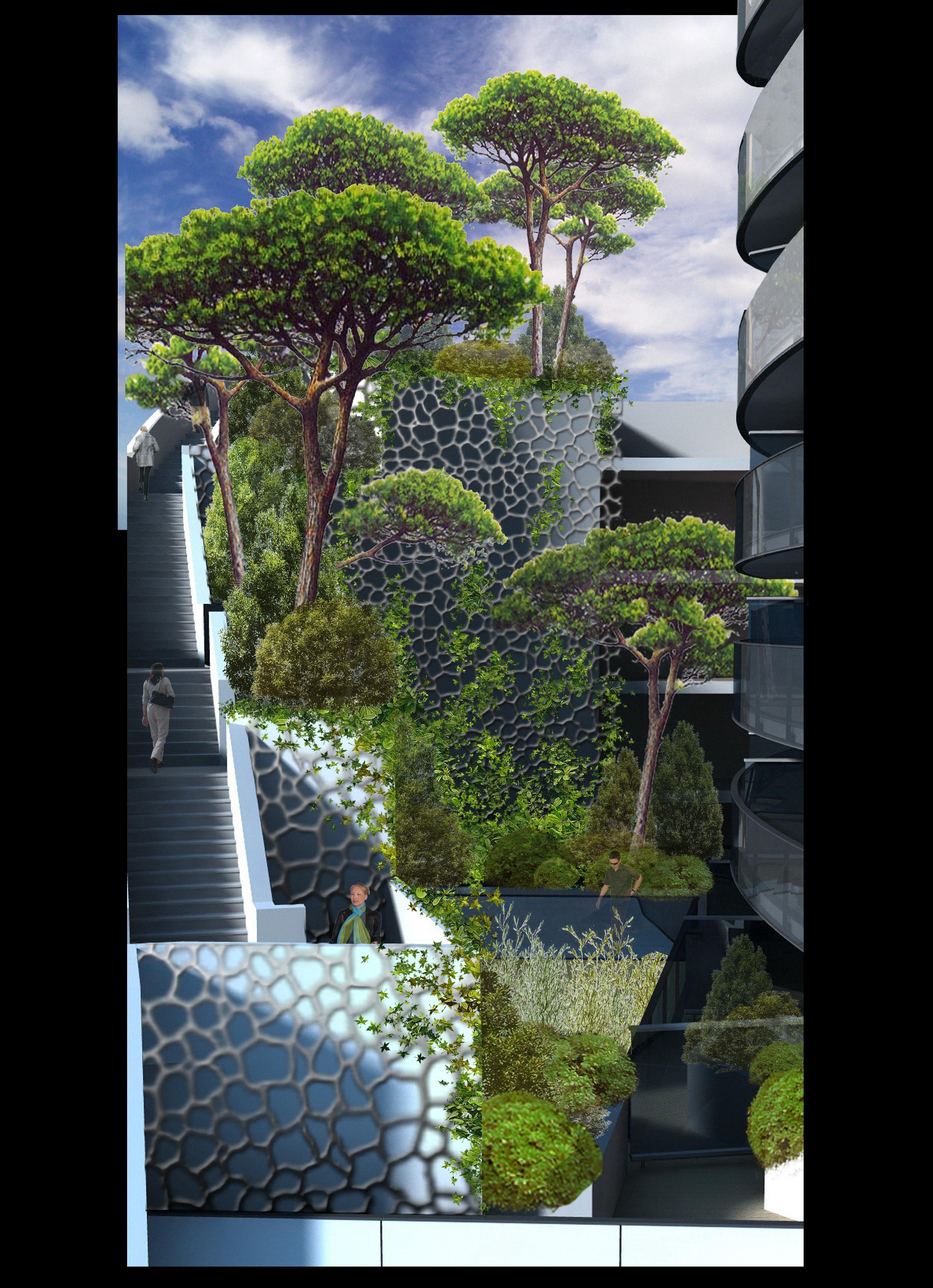 gradients végétaux etap 5